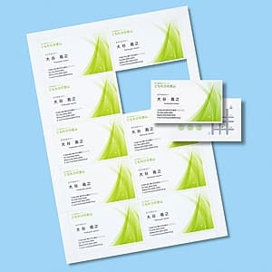 名刺カード インクジェット専用 つやなしマット・超特厚タイプ 両面印刷 マイクロミシンカットタイプ 白 20シート・200カード入 JP-MC12N