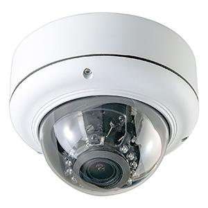 キャロットシステムズ SD録画機能搭載防犯カメラ ドーム型 200万画素 ASD-02
