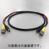 SDSC-1575-T10M