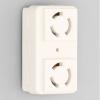 アメリカン電機 複式機器用アウトレット™ 引掛形・2ヶ口 接地形2P 15A 125V 圧着端子式 白色 3117HD